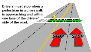 stop-for-pedestrians-image-2-300x172